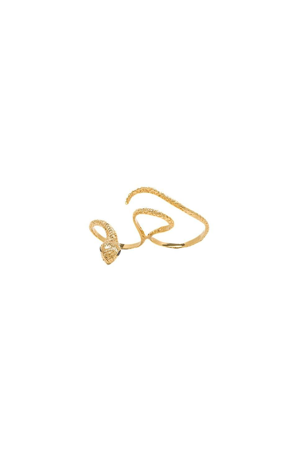 joolz by Martha Calvo Snake Knuckle Ring in Gold & Black