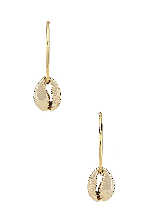 joolz by Martha Calvo Puka Shell Hoop Earrings in Gold