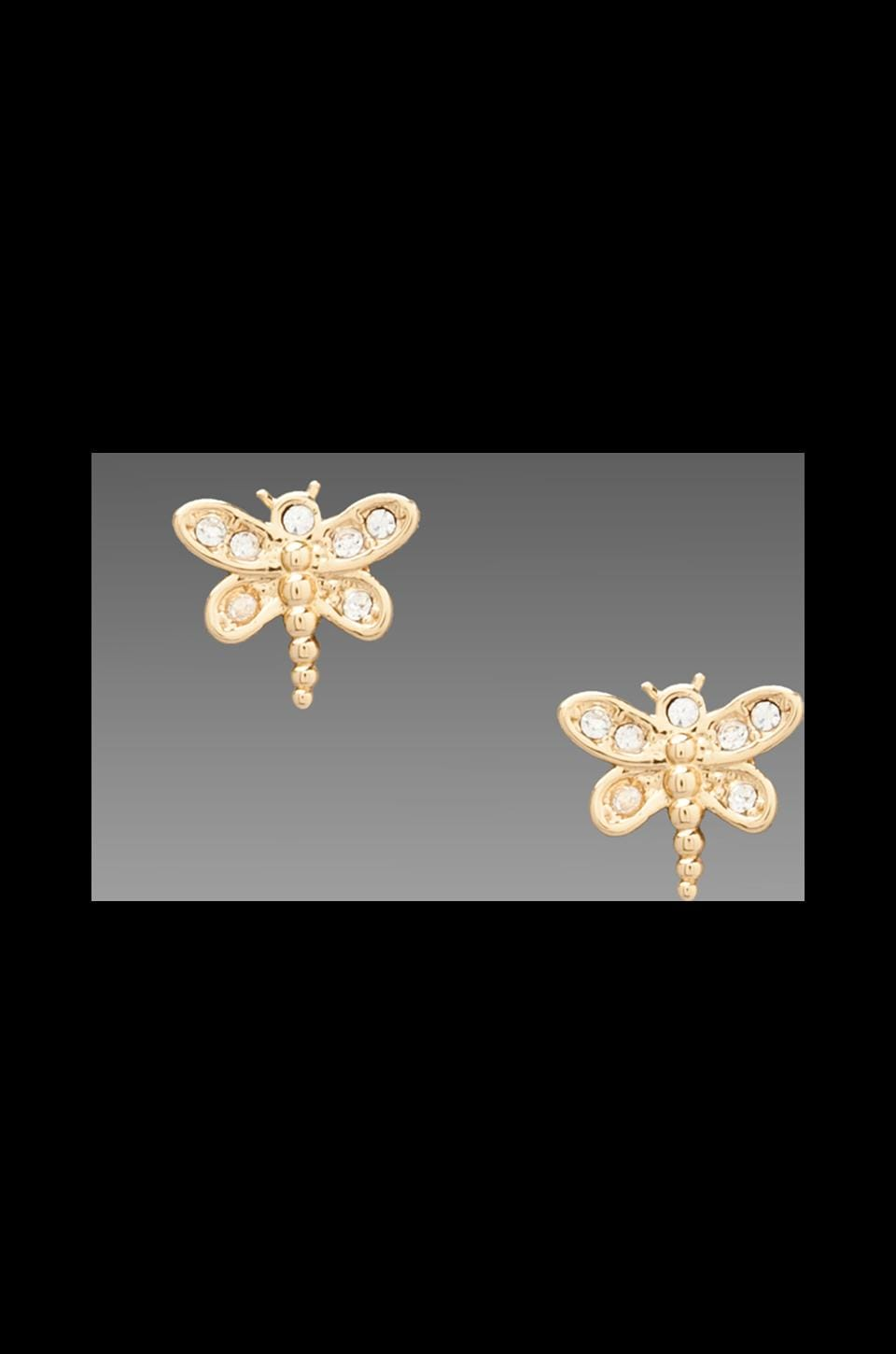 Juicy Couture Dragonfly Stud Earring in Gold
