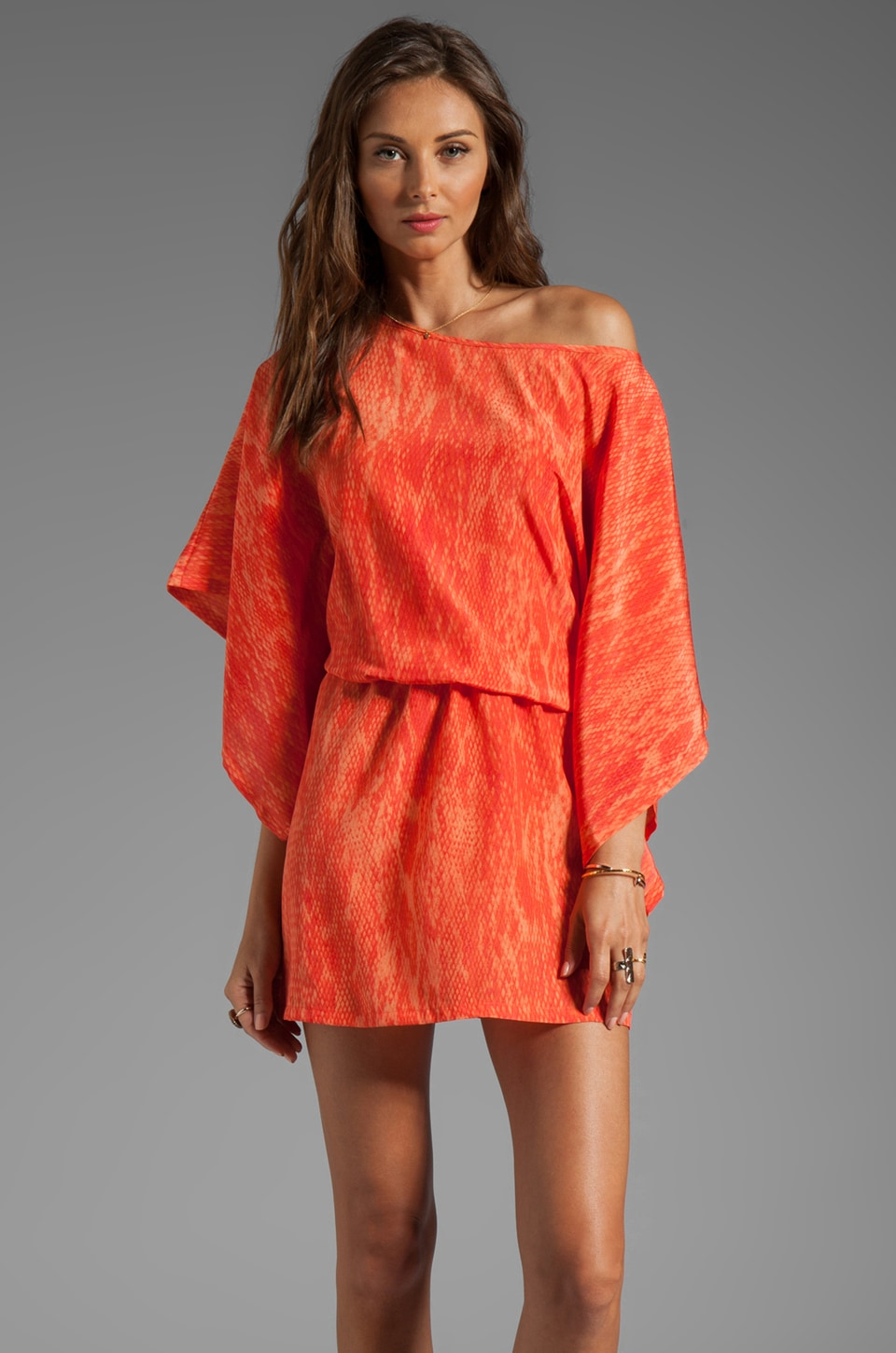 Karina Grimaldi Merida Print Dress in Coral Snake Print