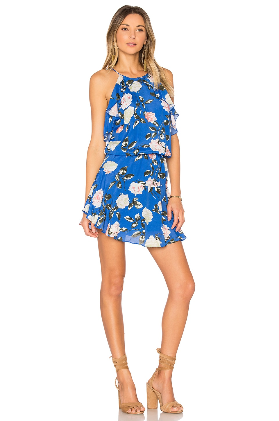 Karina Grimaldi Lulu Print Mini Dress in Blue Rose