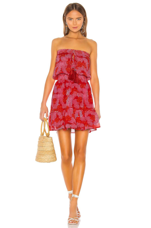 Karina Grimaldi Olie Print Mini Dress in Red Butterfly