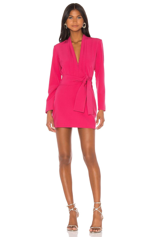 Karina Grimaldi Benjamin Solid Mini Dress in Pink