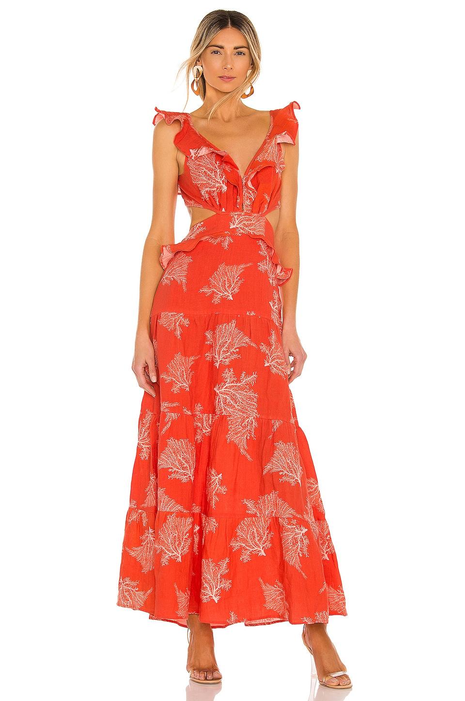 Karina Grimaldi Marigot Print Maxi Dress in Tangerine Coral