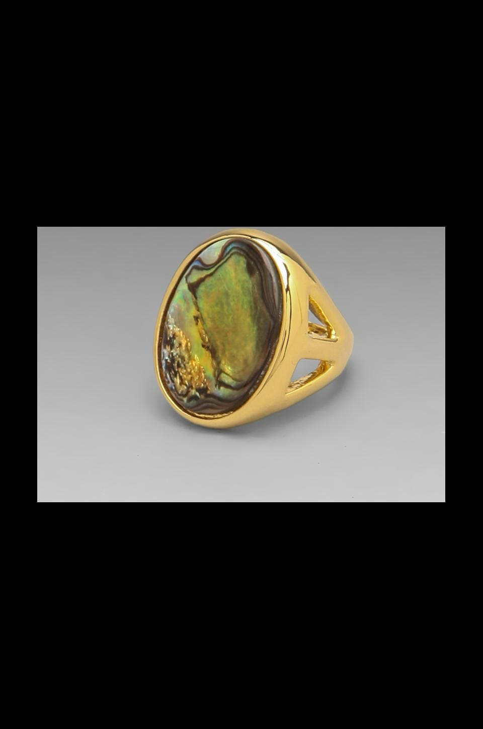 Kenneth Jay Lane Open Faced Abalone Ring in Abalone