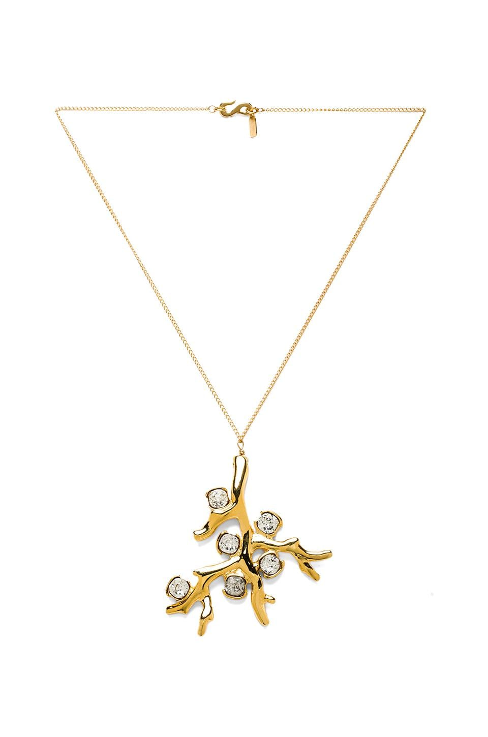Kenneth Jay Lane Branch Pendant Necklace in Gold
