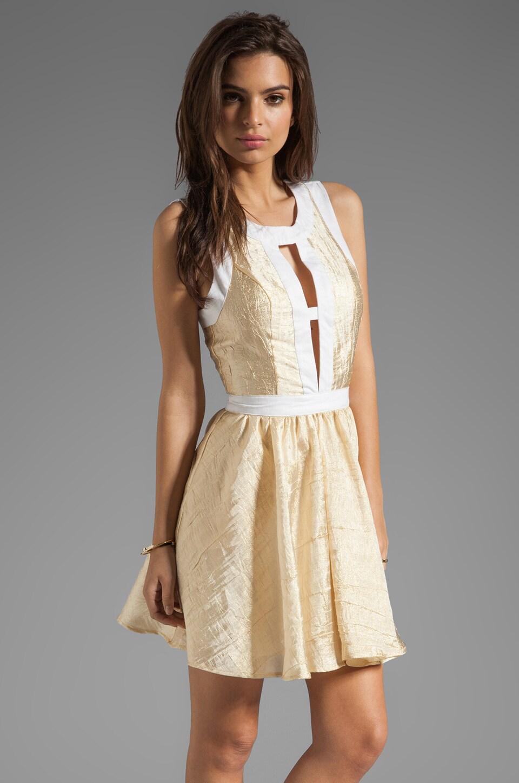 keepsake Day Dream Believe Dress in Gold/Ivory