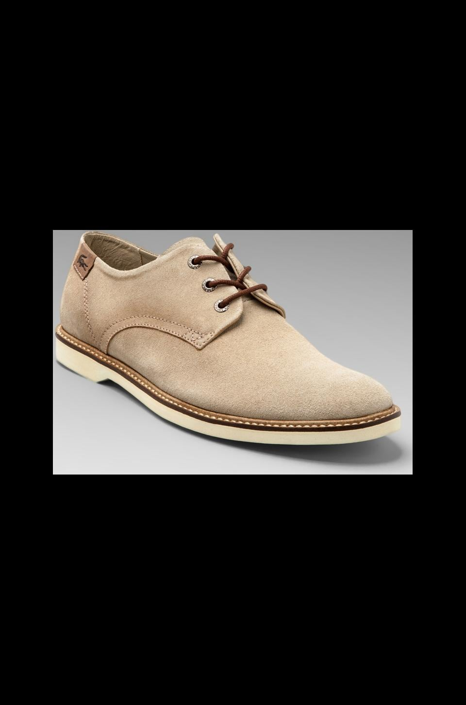 Lacoste Sherbrooke 8 in Tan