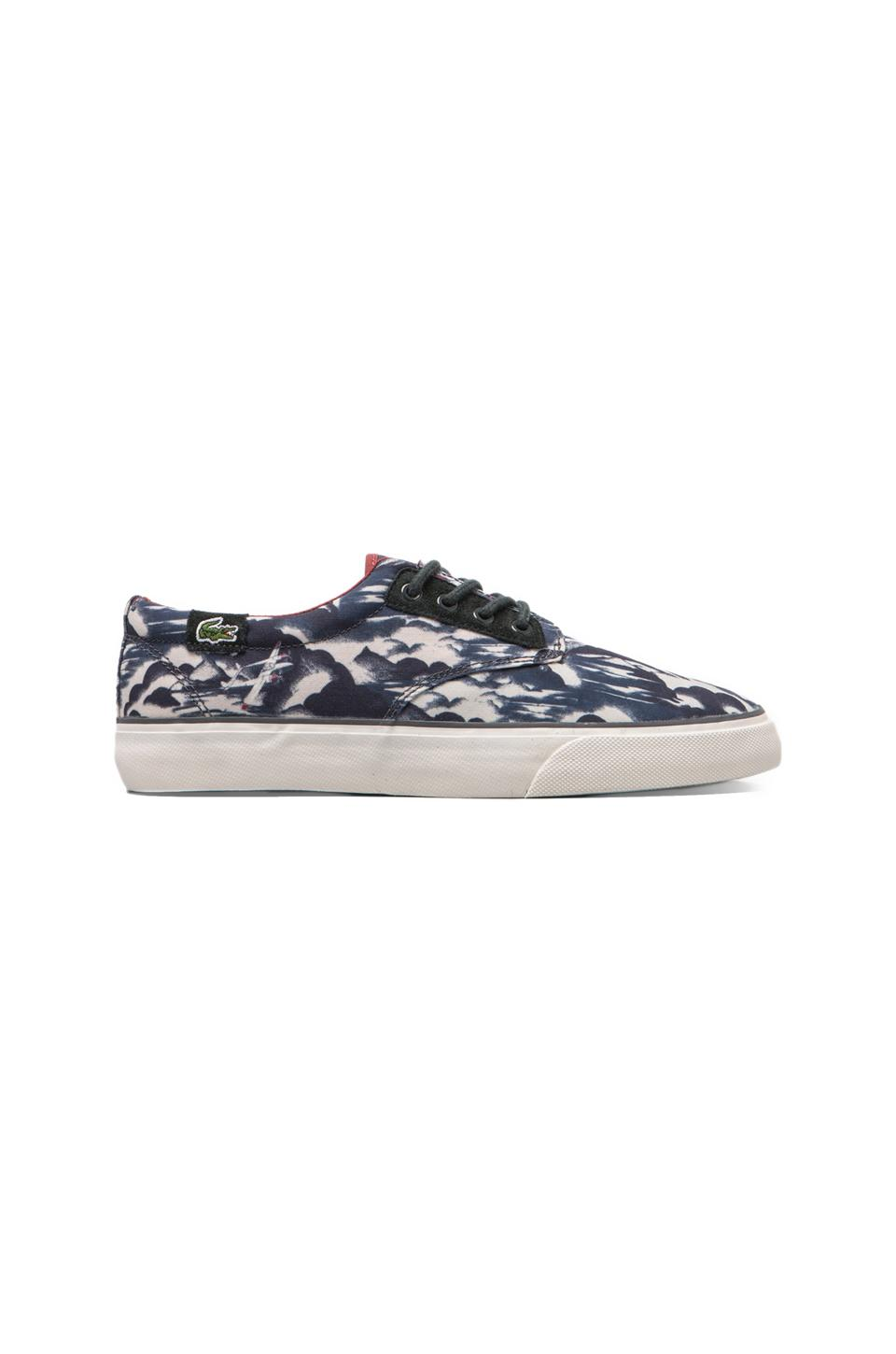 Lacoste LIVE Barbados WHP in Navy/Dark Red/Off White