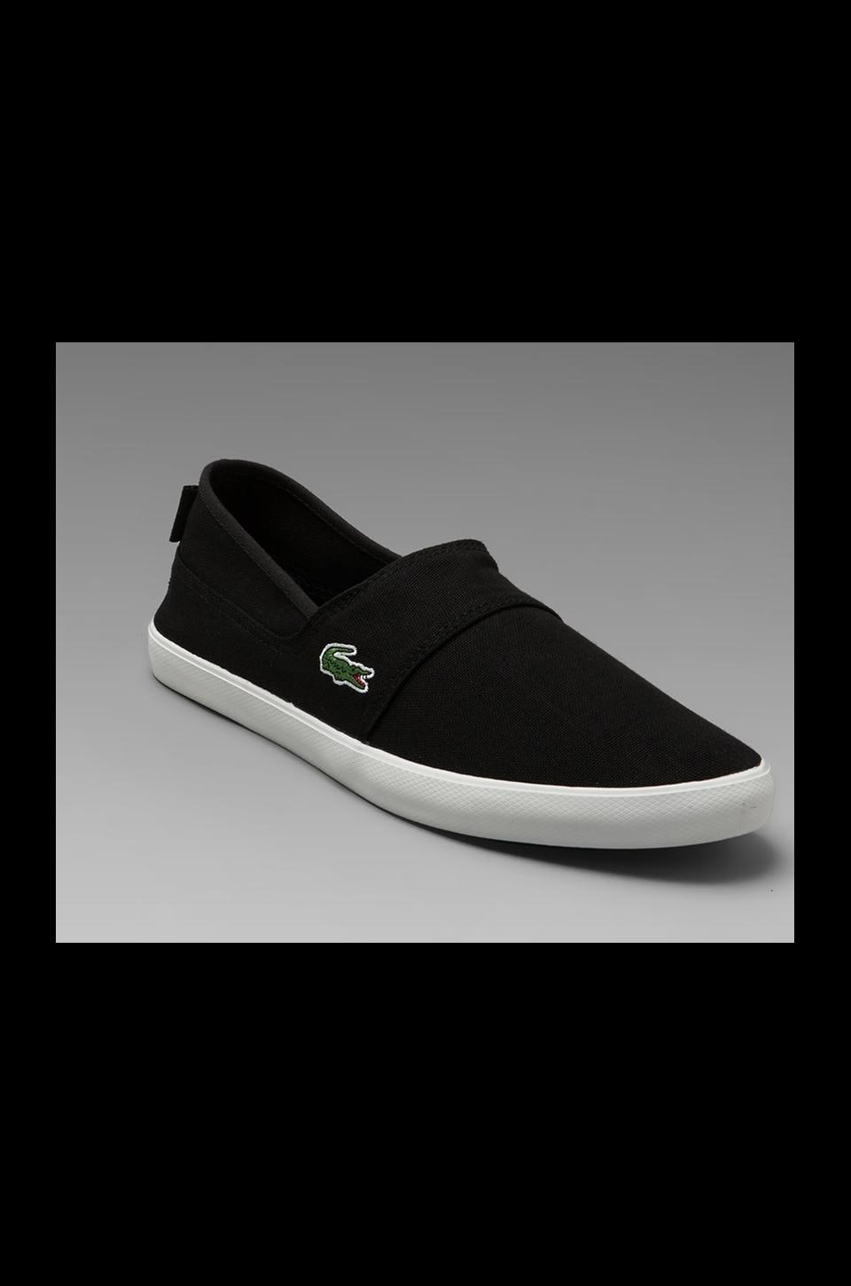 Lacoste Clemente Shoe in Black