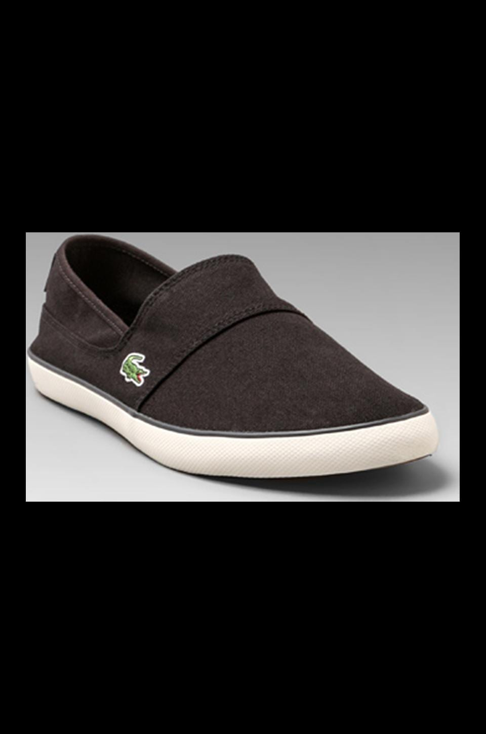 Lacoste Marice TBC in Black / Dark Green