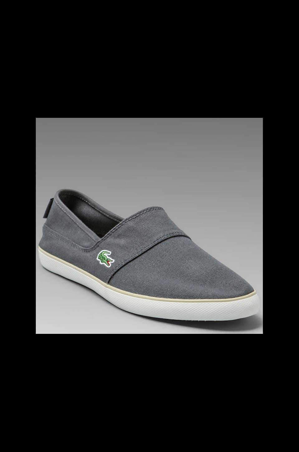 Lacoste Marice TBC in Dark Gray/Natural