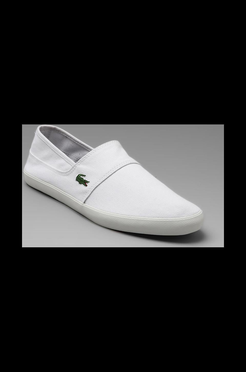 Lacoste Clemente in White/Dark Blue