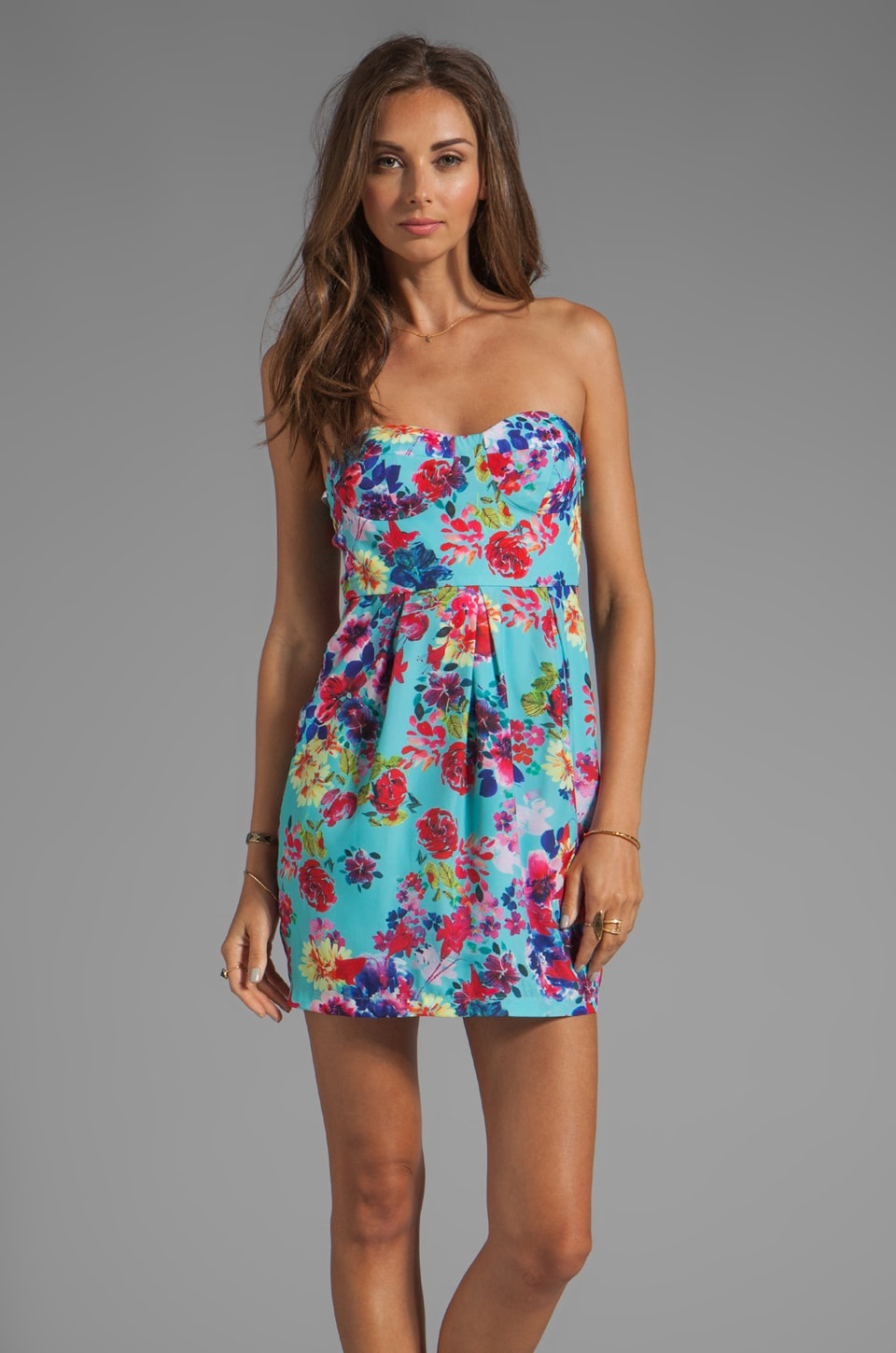 Ladakh Full Bloom Dress in Multi