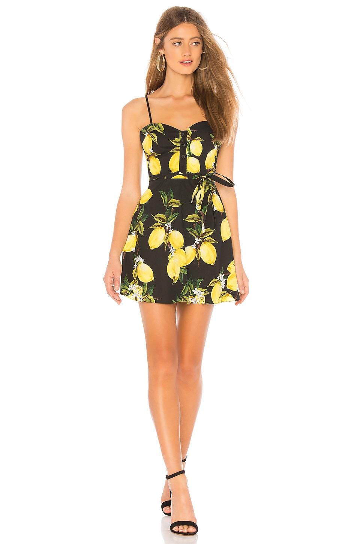 L'Academie The Harlow Mini Dress in Black Lemon
