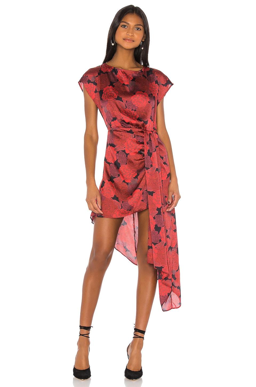 L'Academie The Elaina Mini Dress in Red Peony