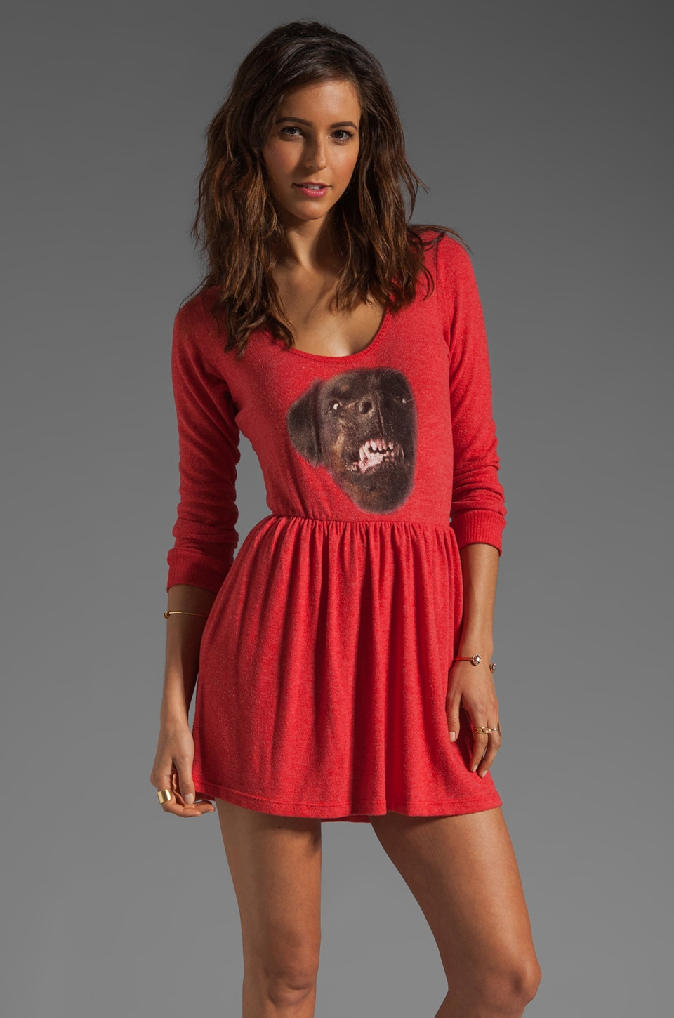 Local Celebrity Rottweiler Dress in Red