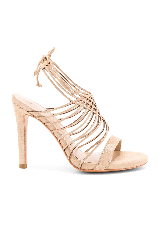 Strappy Heel