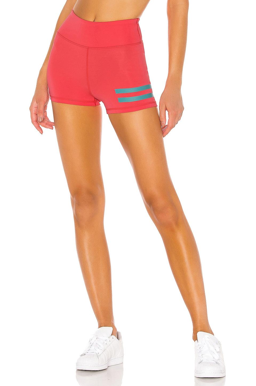 lovewave Kat Shorts in Dubarry Pink