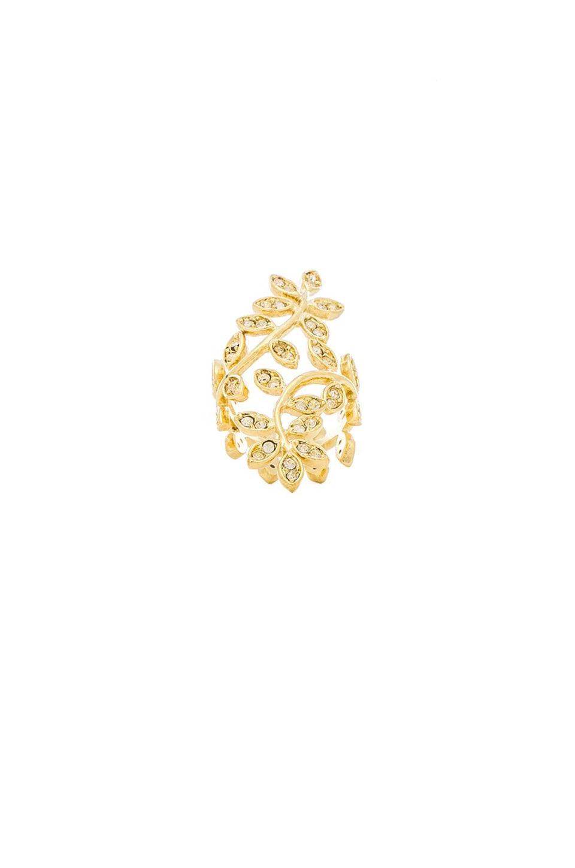 Lisa Freede Vine Ring in Gold