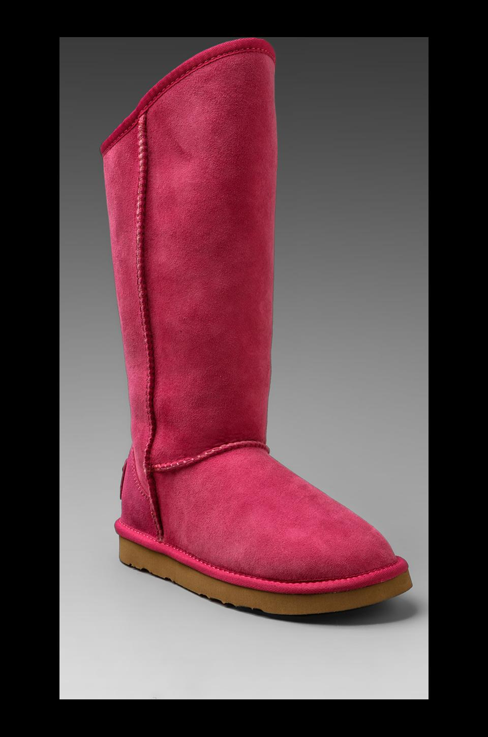 Australia Luxe Collective Cosy Tall Boot with Sheep Shearling in Violet