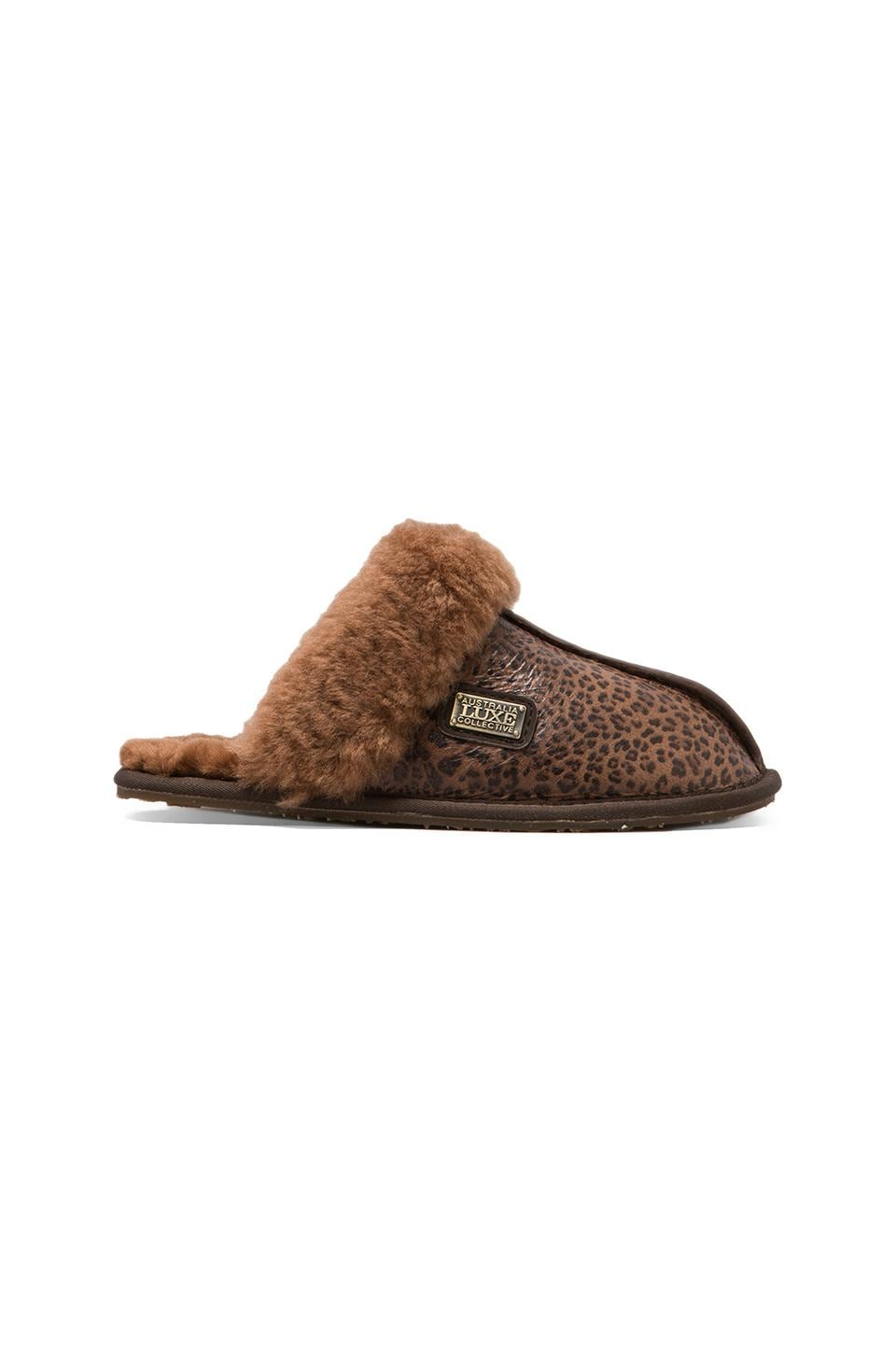 Australia Luxe Collective Closed Mule Slip On with Sheepskin en Léopard