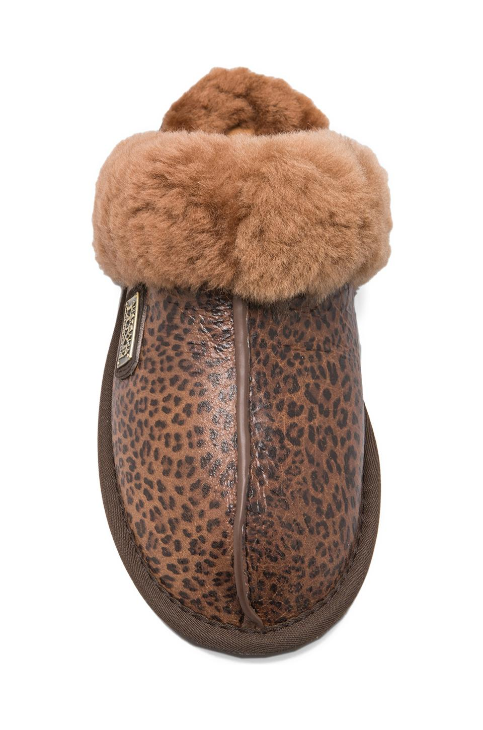 Australia Luxe Collective Closed Mule Slip On with Sheepskin in Leopard