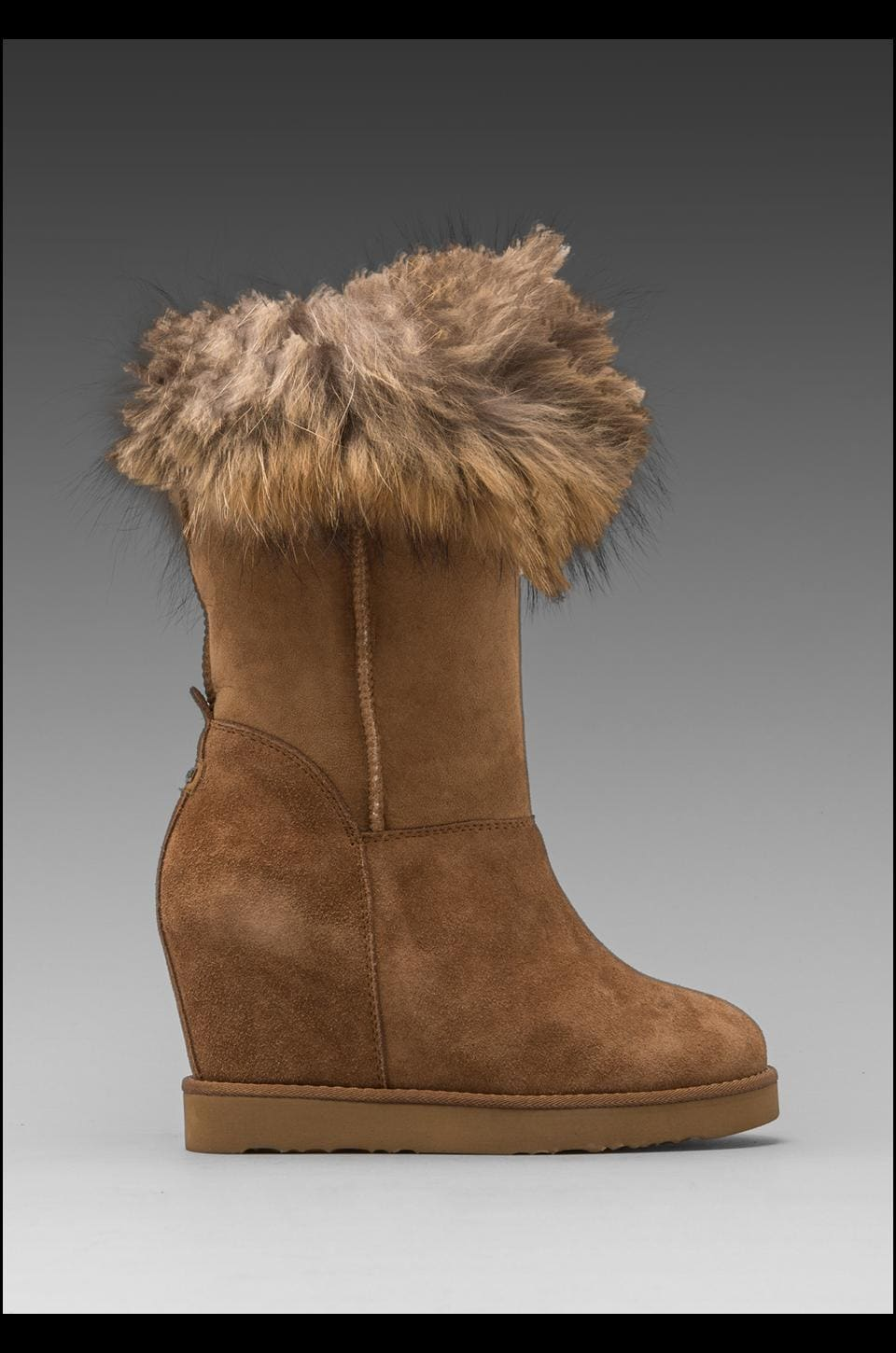 Australia Luxe Collective Foxy Wedge Boot with Asiatic Raccoon Fur in Chestnut