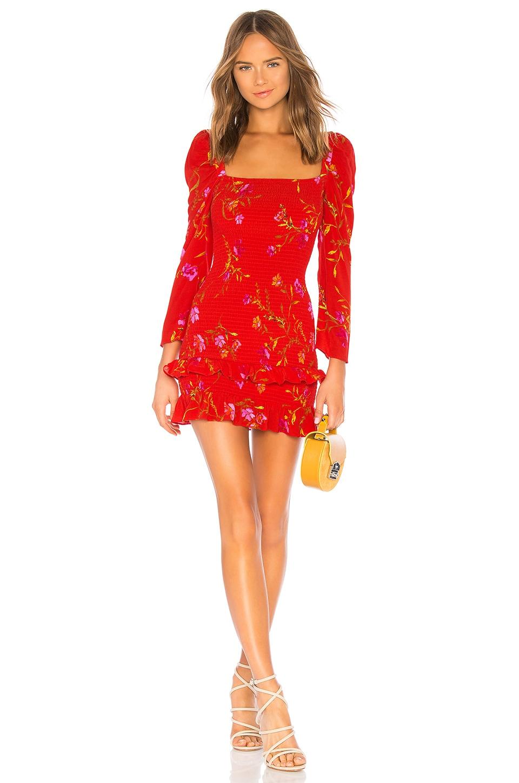 Lovers + Friends Valentina Mini Dress in September Floral