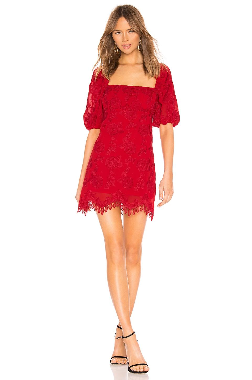 Lovers + Friends Janice Mini Dress in Berry Red