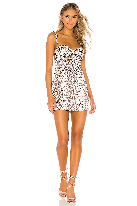 Lovers + Friends Helena Dress in Leopard