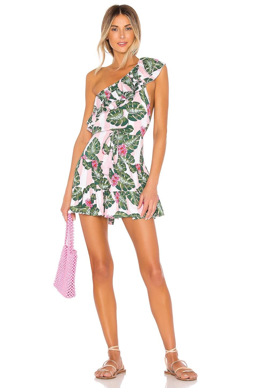 Lovers + Friends Amity Mini Dress in Pink Palm Stripe