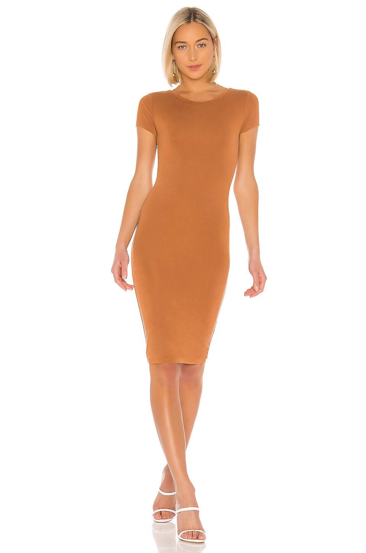 Lovers + Friends Khai Dress in Brown