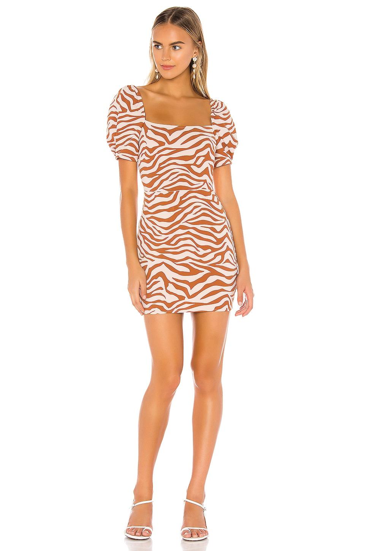 Lovers + Friends Kian Mini Dress in Feline Print