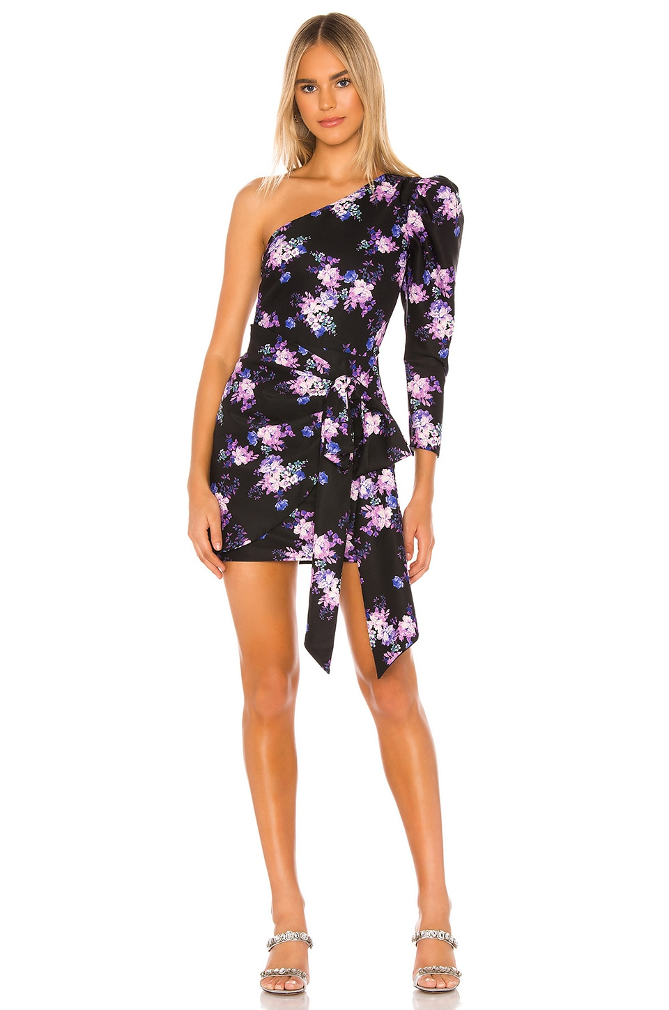Lovers + Friends Sullie Mini Dress in Royal Floral