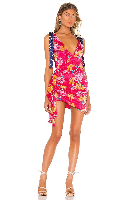 Lovers + Friends Kelton Mini Dress in Tropical Print
