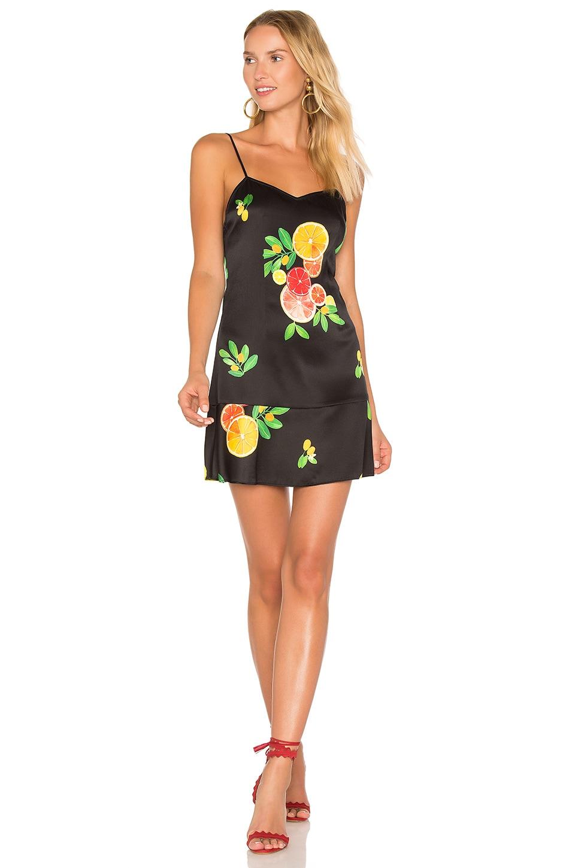 LPA Dress 268 in Black Citrus
