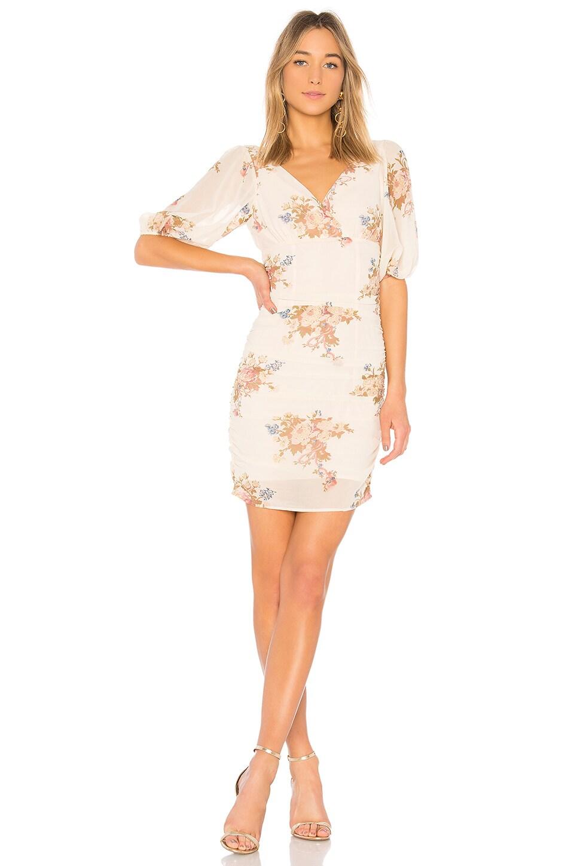 LPA Dress 694 in Blush Bouquet