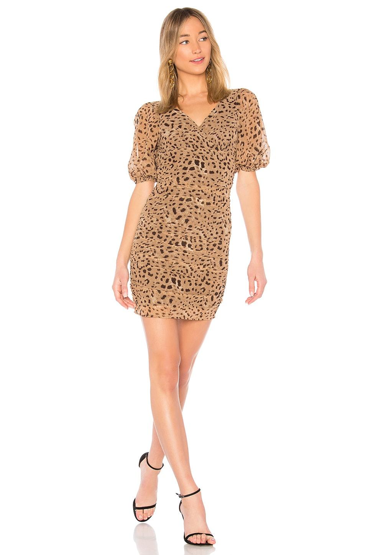 LPA Dress 694 in Italian Leopard