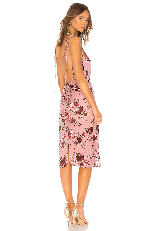 LPA Tie Back Tank Dress in Roses On Rose