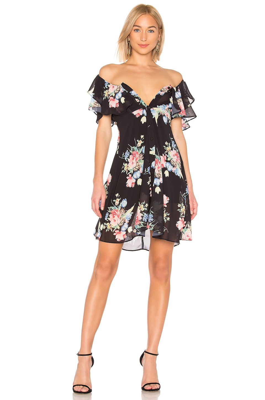 LPA Button Up Midi Dress in Midnight Roses