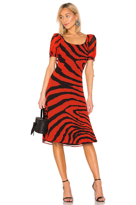 LPA Magda Dress in Zebra