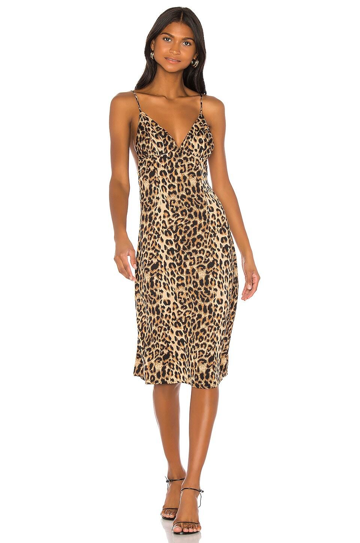 LPA Lunetta Dress in Leopard