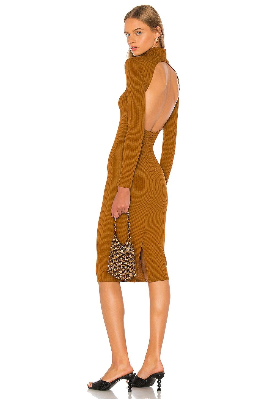 LPA Jovi Dress in Rust
