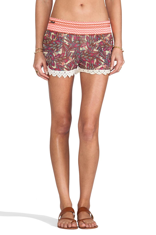 Maaji Shorts in Shiver Me Timbers
