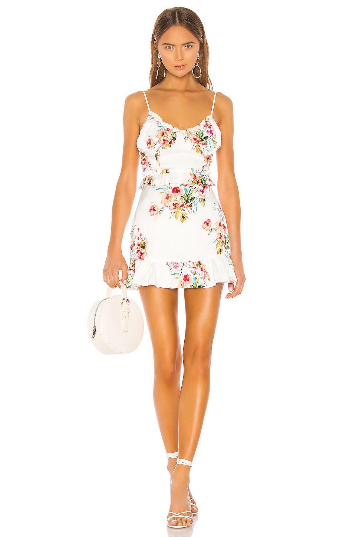 MAJORELLE Nova Mini Dress in Watercolor Multi