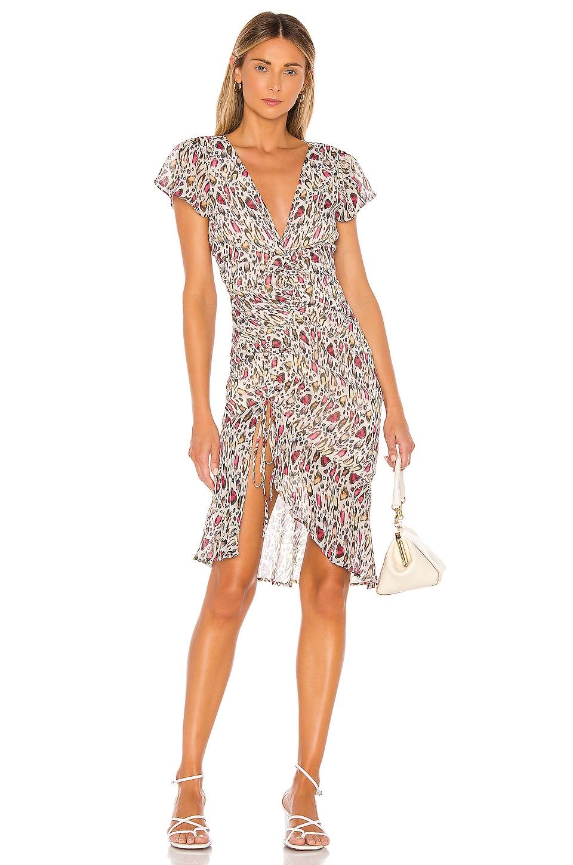 MAJORELLE Elaine Midi Dress in Leopard Multi