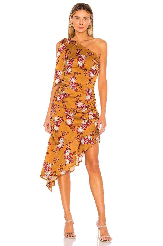 MAJORELLE Princeton Midi Dress in Countryside Multi
