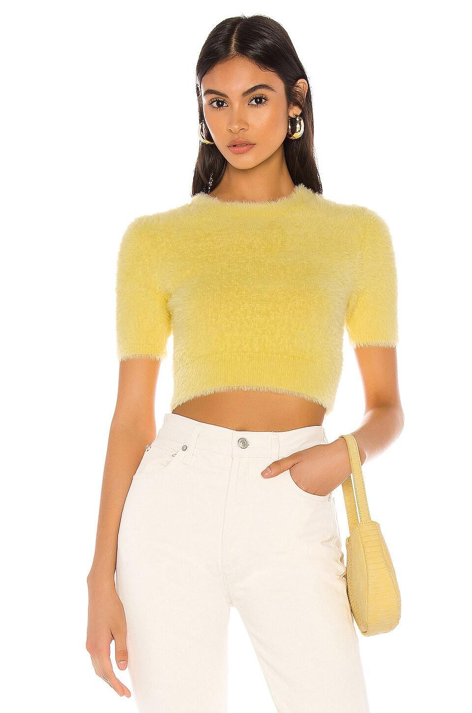 MAJORELLE Jane Sweater in Pale Yellow