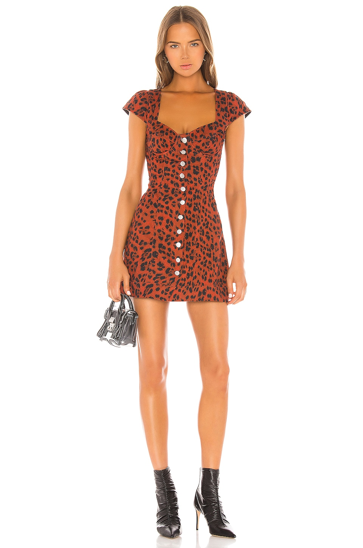 Miaou Gigi Dress in Red Leopard